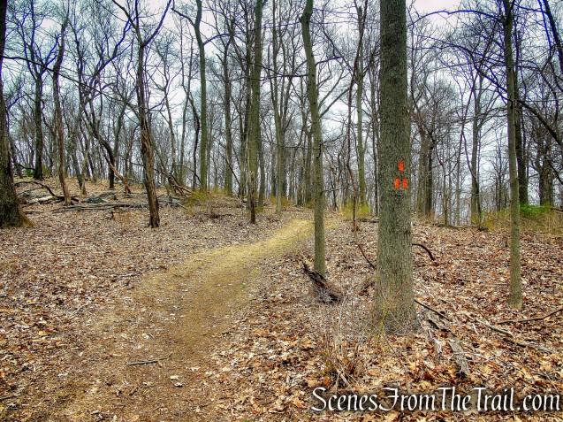 Orange Trail - Taxter Ridge Park Preserve