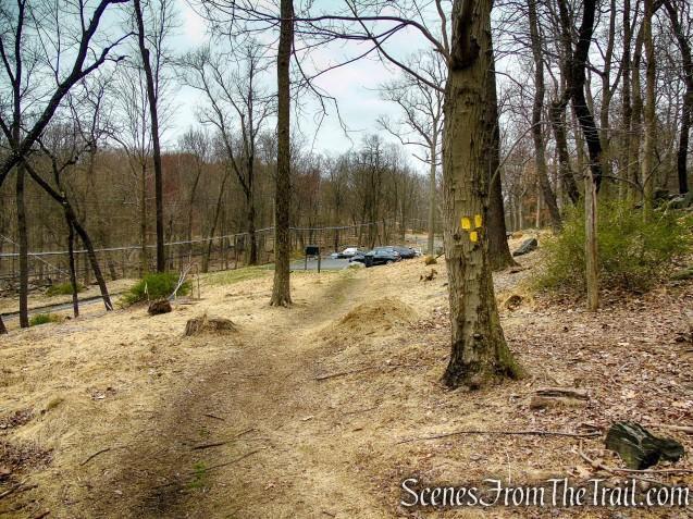 terminus of Yellow Trail - Taxter Ridge Park Preserve