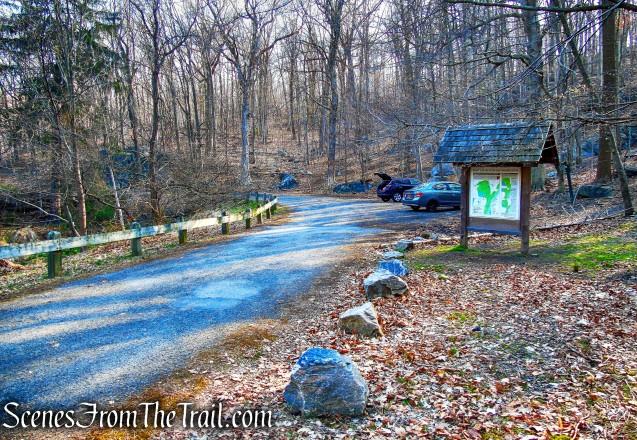 Cyrus Field Road Trailhead