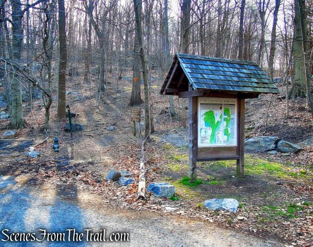 Cyrus Field Road Trailhead