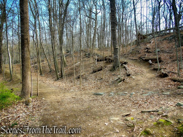 cross the road and take the SN Trail uphill