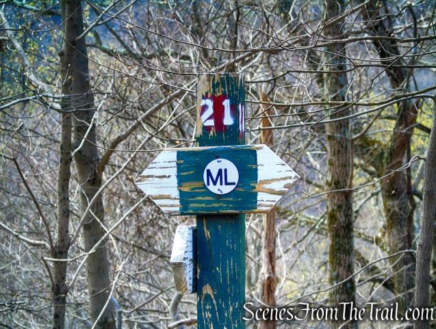 ML Trail – post #21