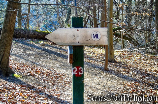 ML Trail - post #23