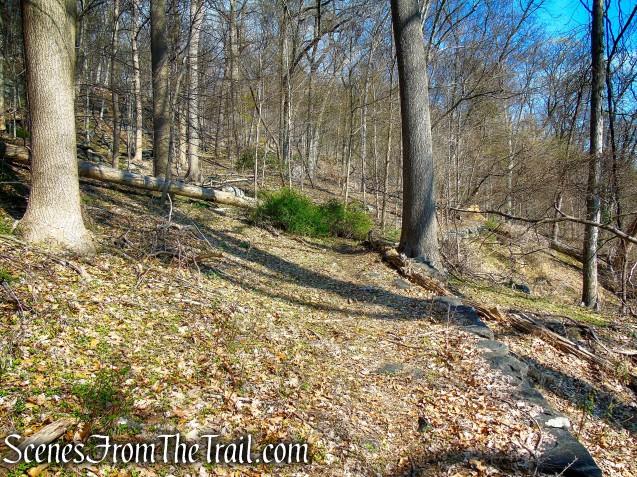 Macy Monument Trail - Irvington Woods