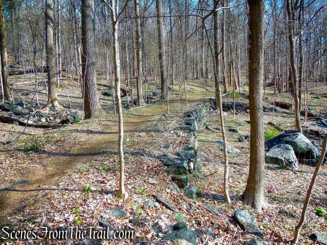 ML Trail - Irvington Woods