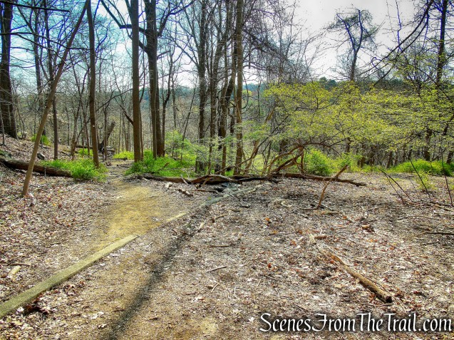 Abandoned Sam Mill River Parkway Exit