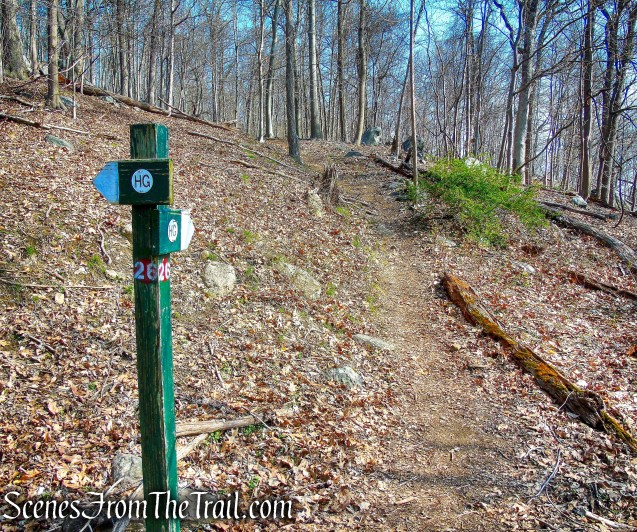HG Trail – post #26
