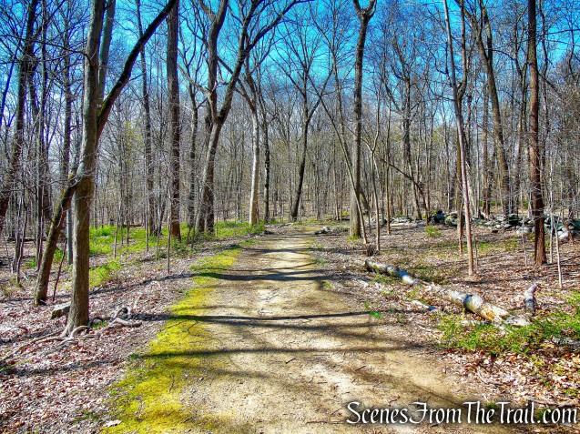 IP Trail - Irvington Woods