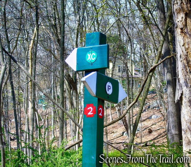 post #2 - Irvington Woods