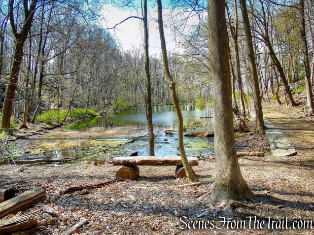 Marshall Pond - Irvington Woods