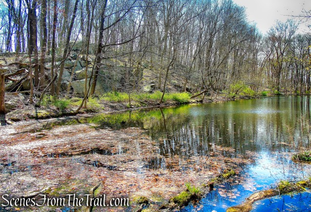 Marshall Pond