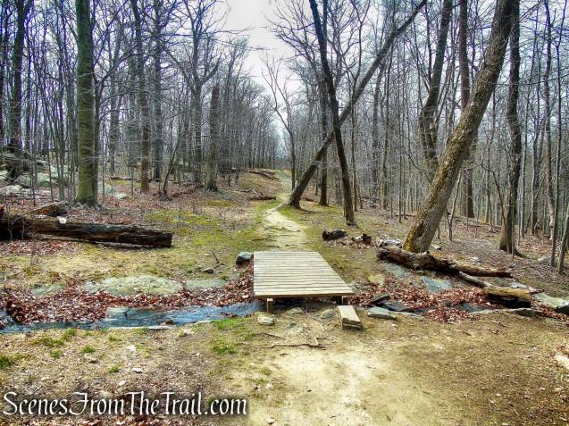 WL Trail - Irvington Woods