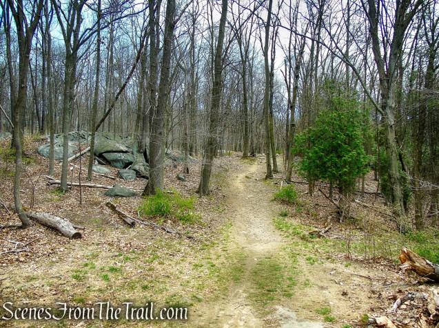 HG Trail - Irvington Woods
