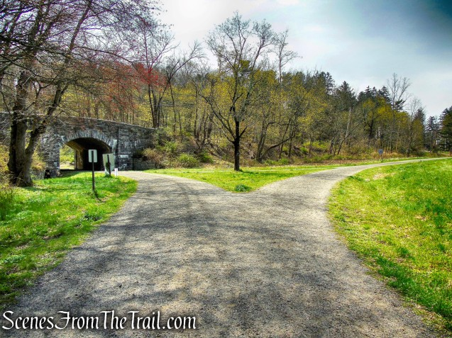 Douglas Hill Loop Trail - Rockefeller State Park Preserve