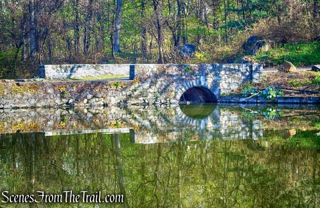 Halsey Pond Dam