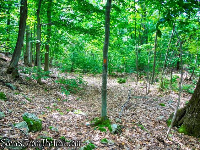 Maria Schmidt Memorial Trail - Mica Ledges Preserve
