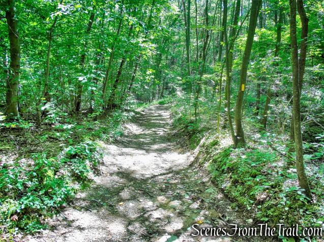 turn right on Selectmen's Path