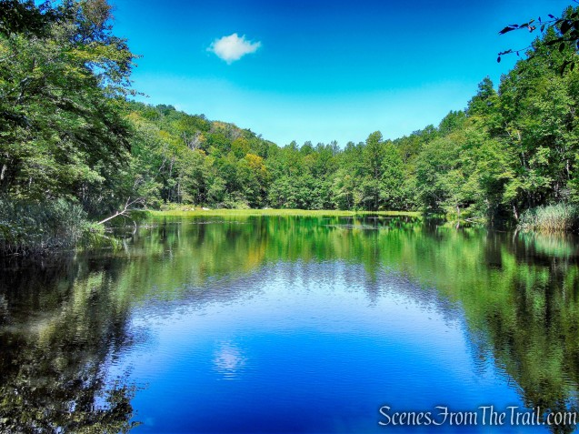 Whitney Pond - Mica Ledges Preserve