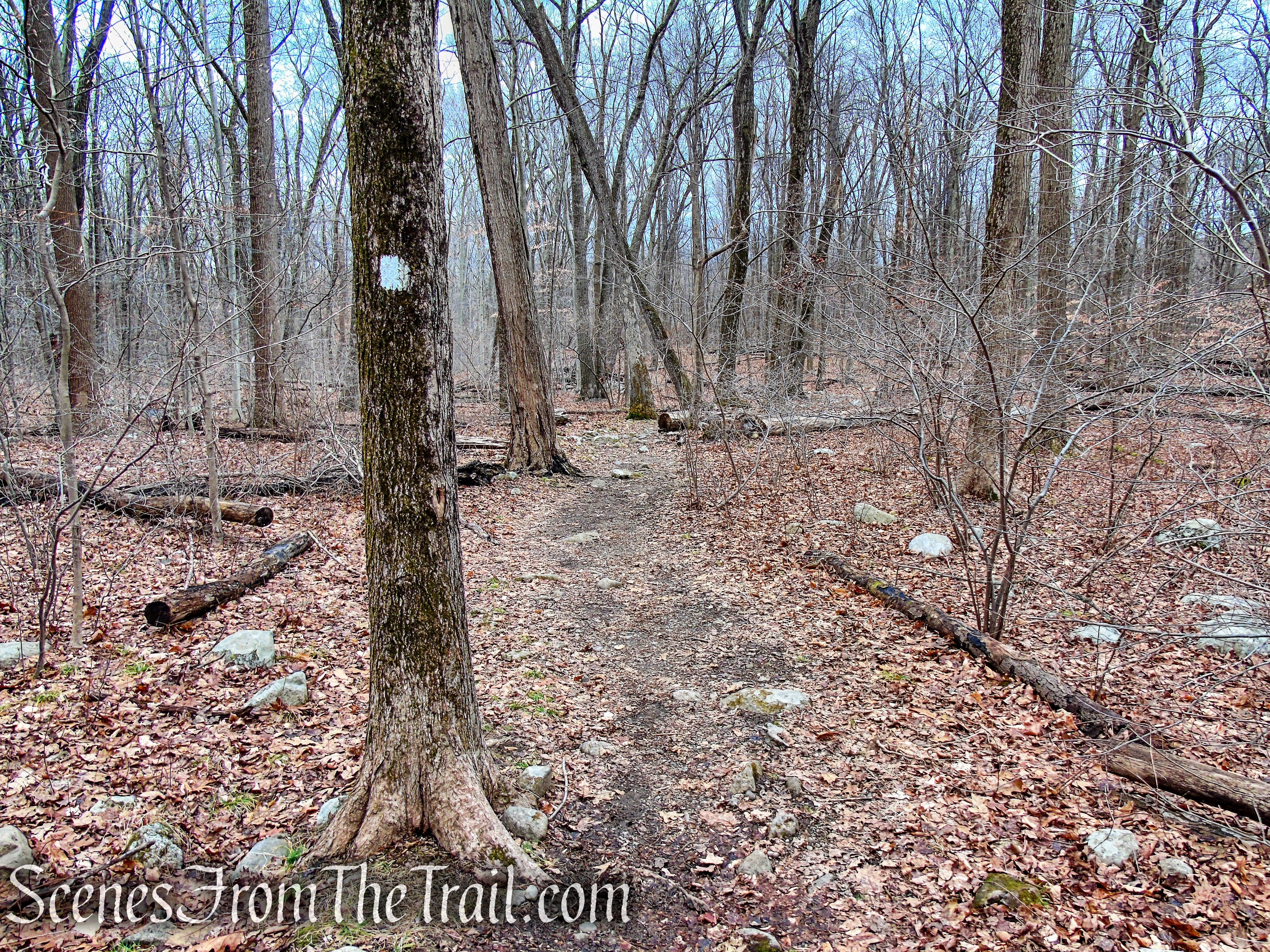 Kakiat Trail - Kakiat County Park