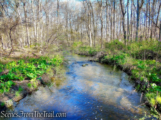 inlet stream - Crom Pond Trail