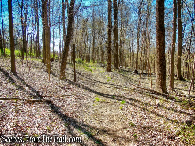 Mid Park Loop Trail - FDR State Park