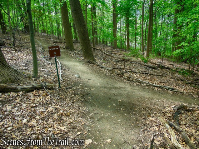 Blue Trail - Lenoir Preserve