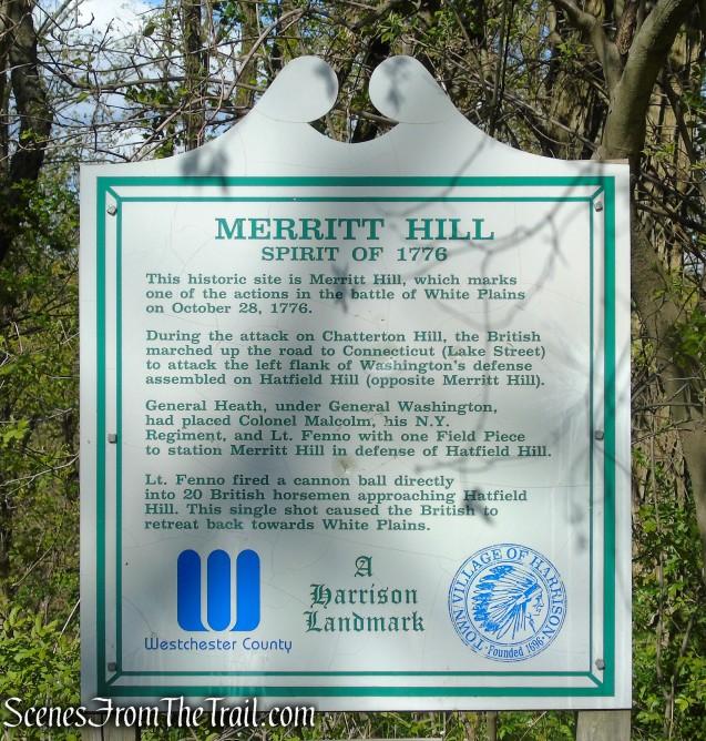 Merritt Hill - Silver Lake Preserve