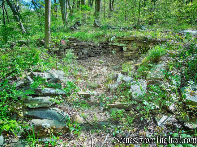 ruins - Yellow Trail - Silver Lake Preserve