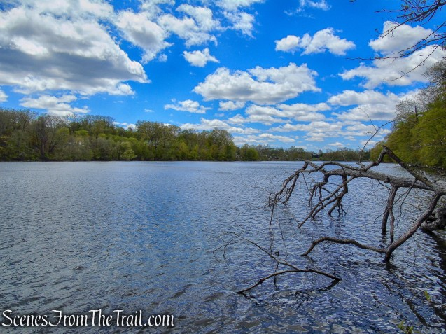 White Trail - Silver Lake Preserve