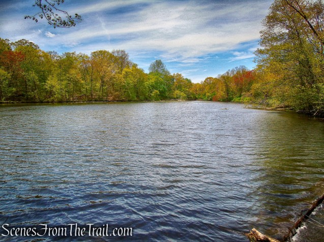 Goodliffe Pond - Larchmont Reservoir