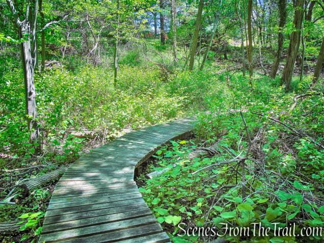 Cliff Emanuelson Trail - Larchmont Reservoir