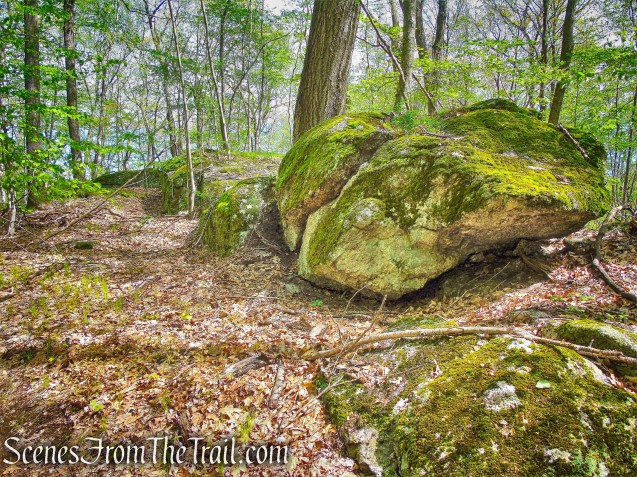 Deer Hollow Trail - Ward Pound Ridge Reservation