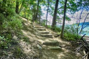 stone steps - Crawbuckie Nature Preserve