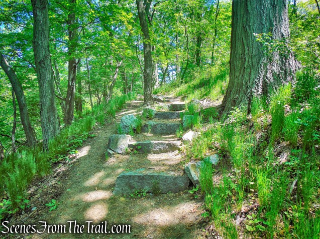 stone steps - Crawbuckie Nature Preserve