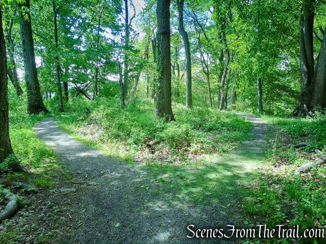 handicapped accessible trail - Crawbuckie Nature Preserve