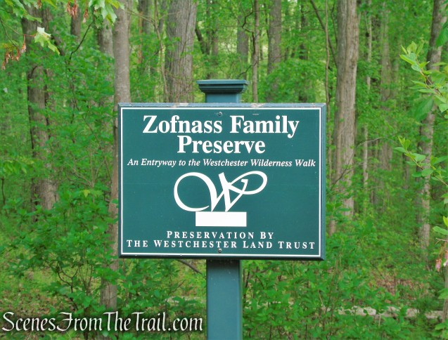 Westchester Wilderness Walk - Zofnass Family Preserve
