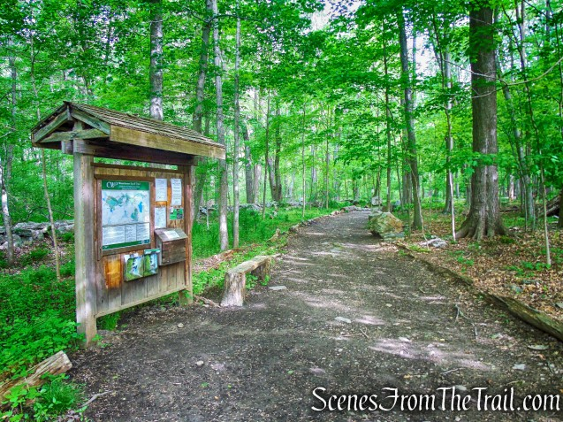 Southern Loop Trailhead - Upper Shad Road