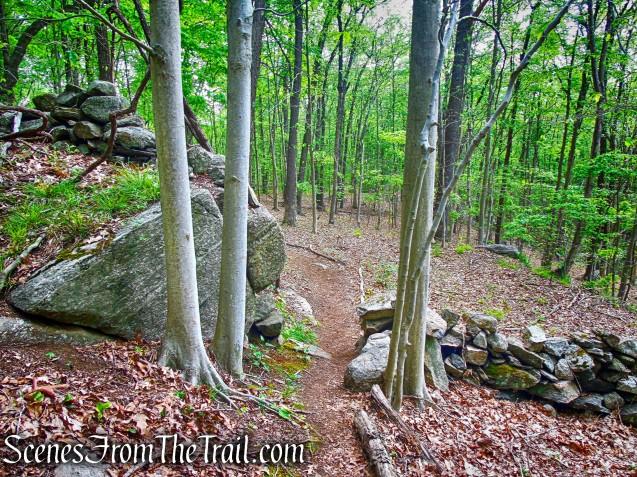 Southern Loop - Westchester Wilderness Walk