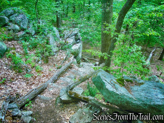 Grand Stone Staircase - Eastern Loop
