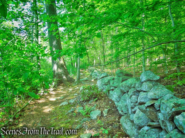 Eastern Loop - Westchester Wilderness Walk