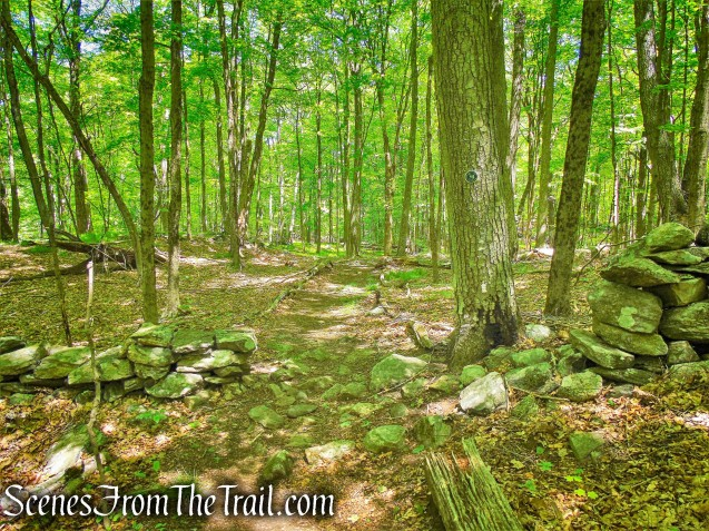 Northern Loop - Westchester Wilderness Walk