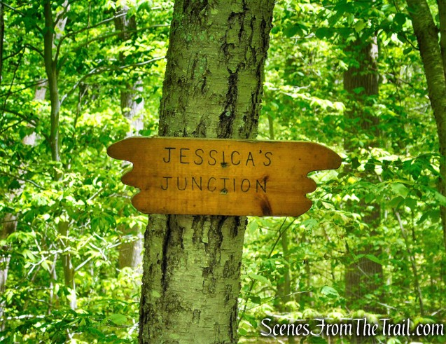 Jessica's Junction - Westchester Wilderness Walk