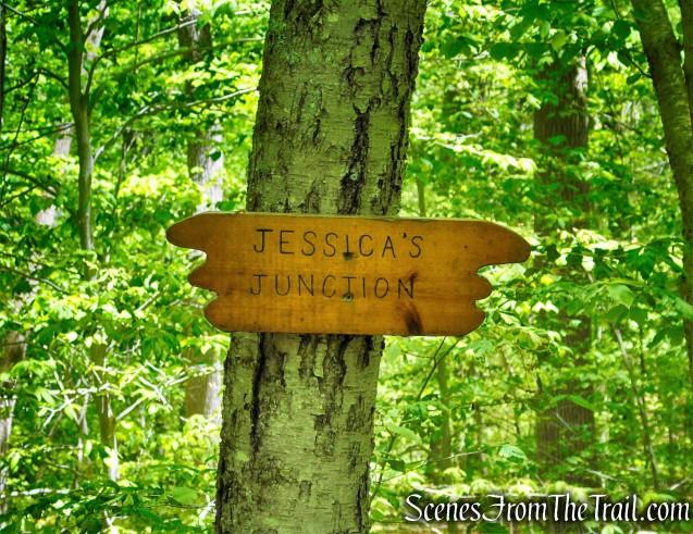 Jessica's Junction - Westchester Wilderness Walk
