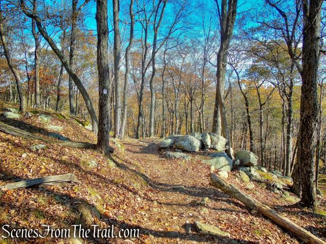 Arden-Surebridge Trail - Pine Swamp Mountain