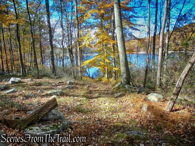 woods road - Lake Askoti