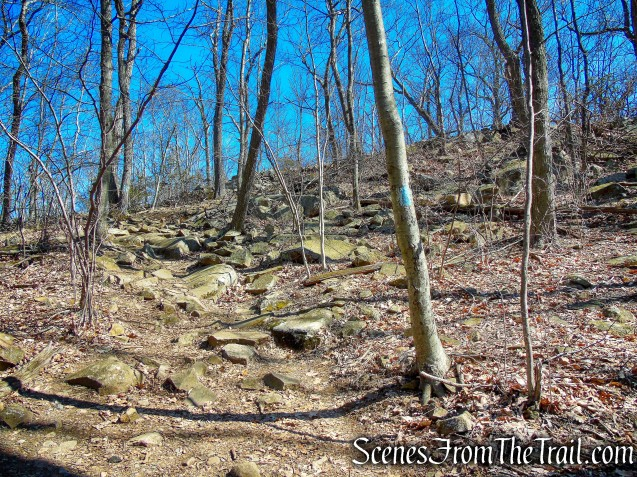 Quinnipiac Trail – Sleeping Giant State Park