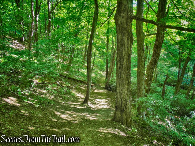 Red Trail - Whippoorwill Park