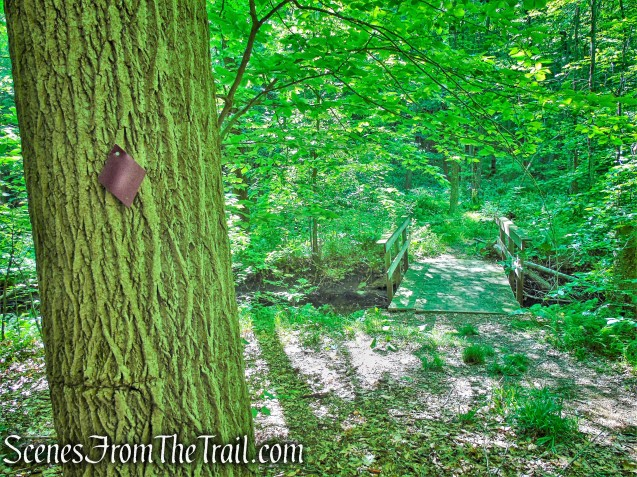 Purple Trail - Whippoorwill Park