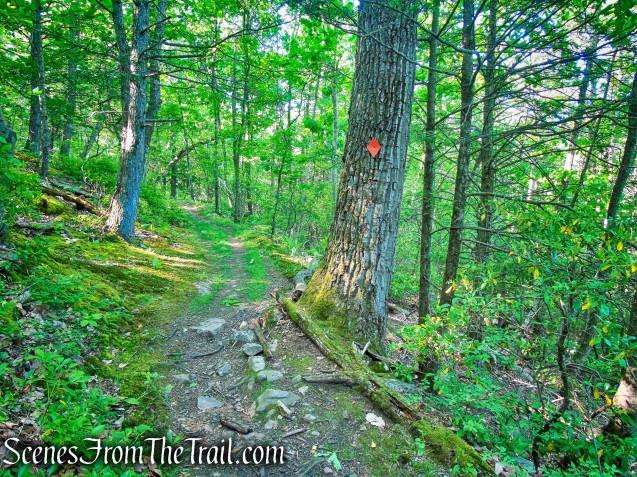 Orange Trail - Whippoorwill Park