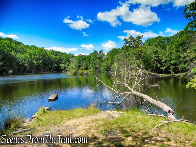 Blue Lake - Salt Hill State Forest